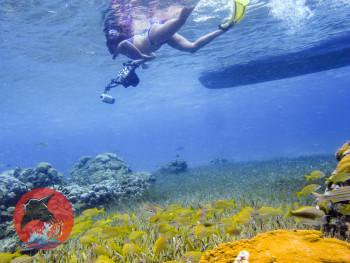 woman snorkeling beautiful cielo