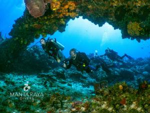 Huge reef arc on the NE Reef
